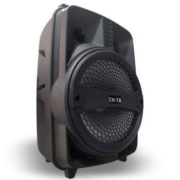CAJA AMPLIFICADA 8″ RECARGABLE USB/FM/BT + MIC + CONTROL-5